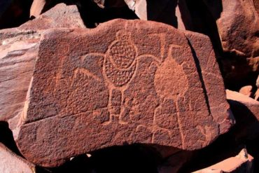 Een Burrup petroglyph (foto: fara.com.au).